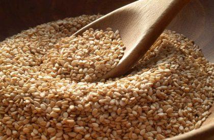 Sesame-Seed